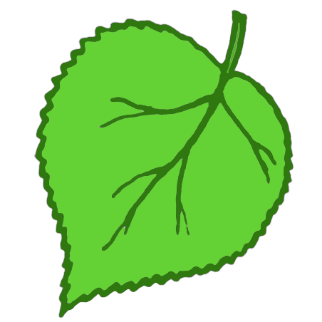 Png Save Leaf image #7075