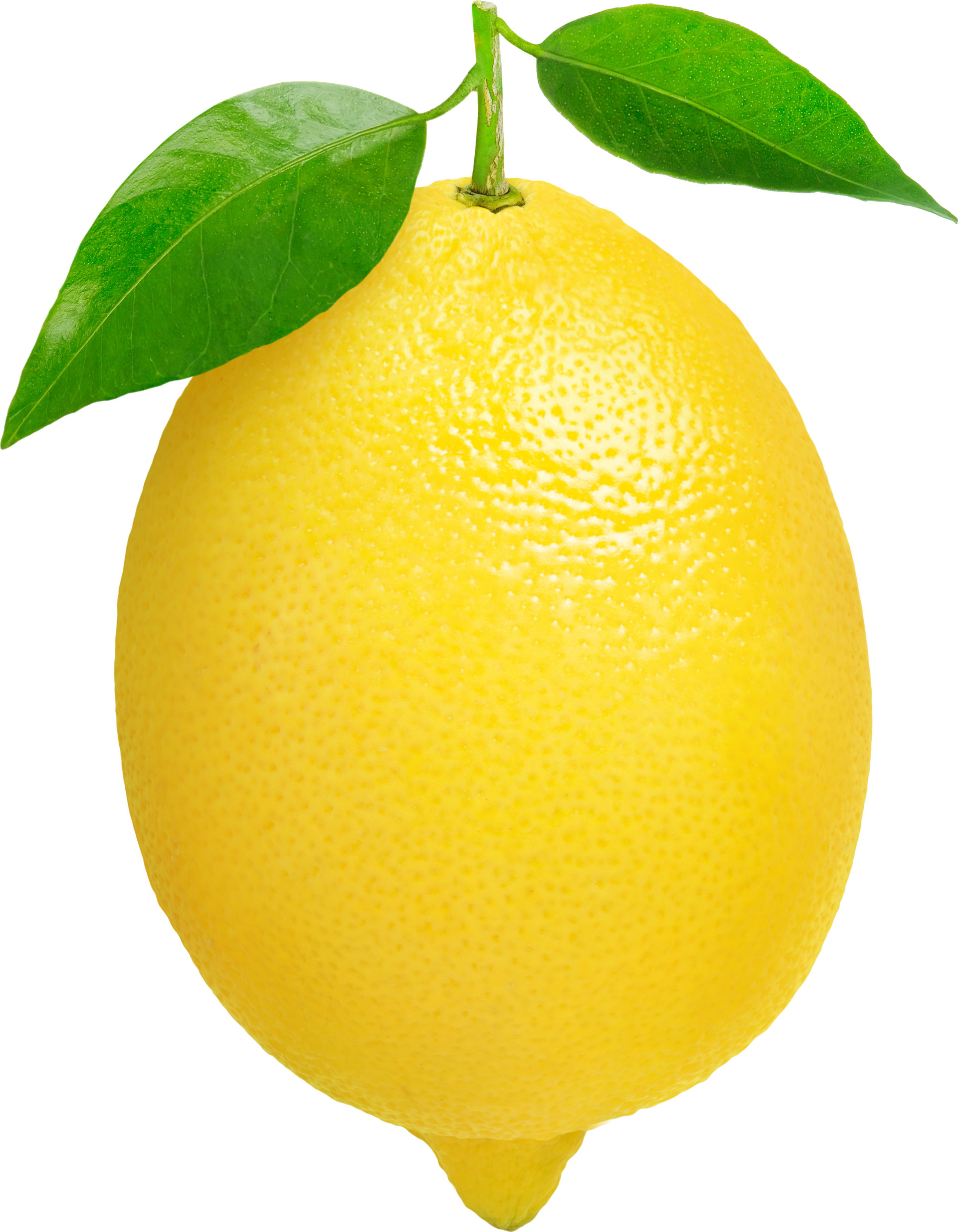 leaf lemon png
