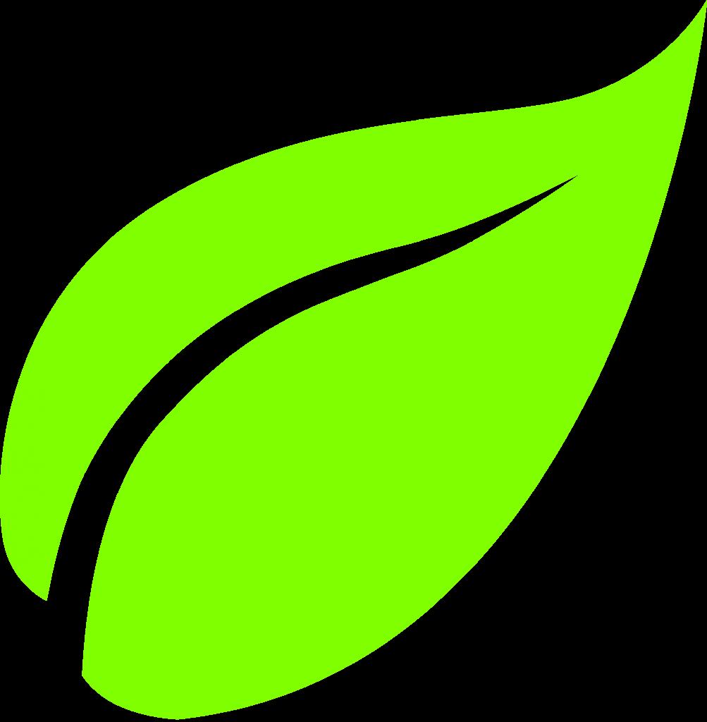 Leaf Png image #38633