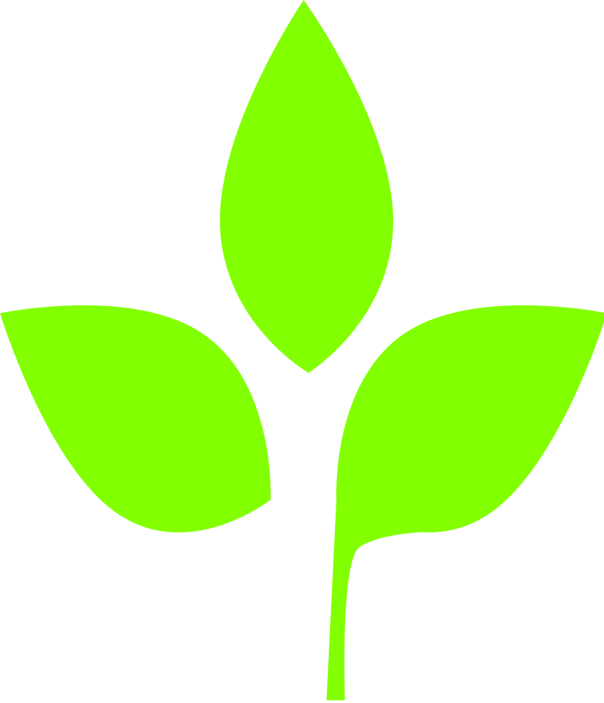 Leaf Png image #38635