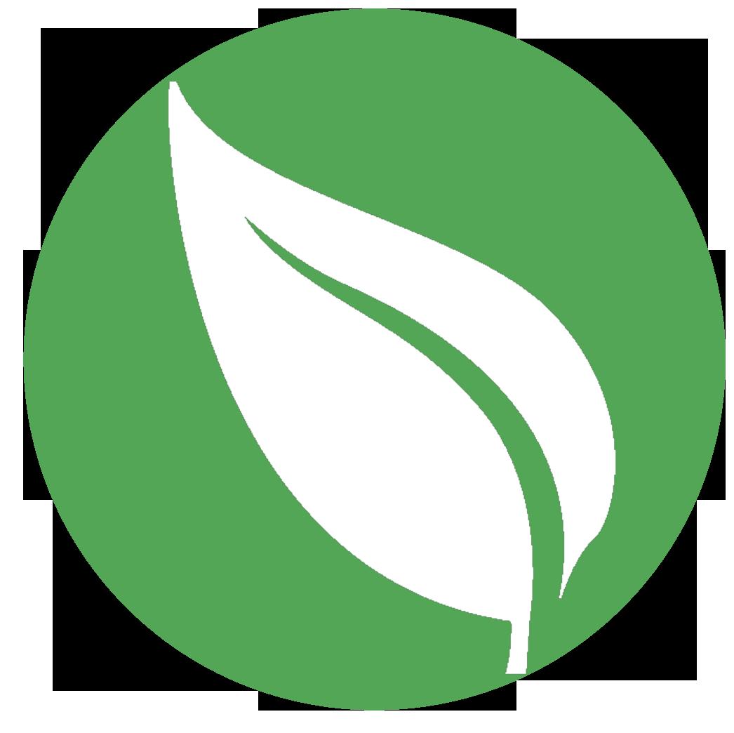 Leaf Png image #38614