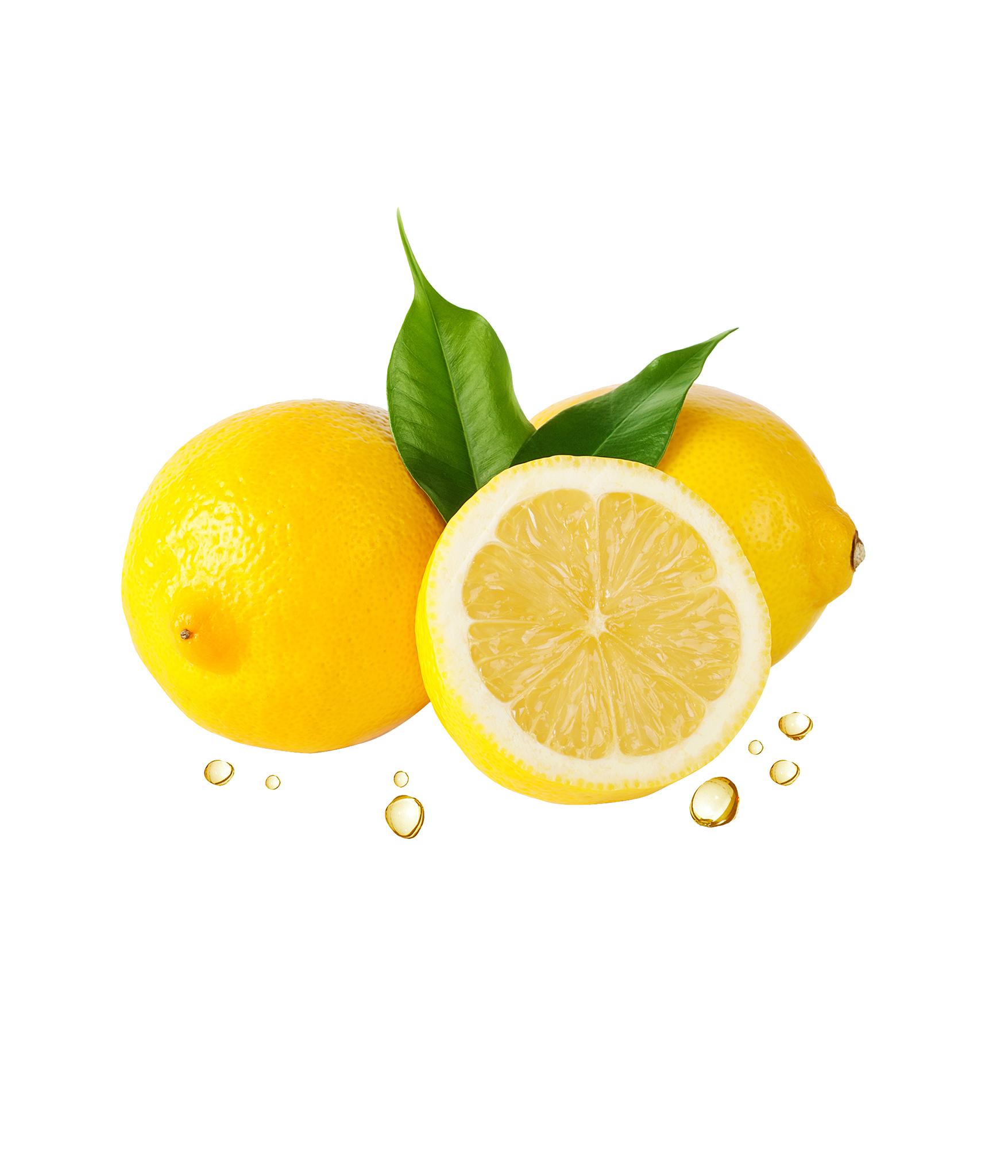 Lemon Leaf Png image #38645