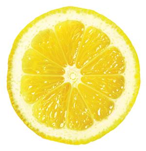 Lemon Slice Png image #38664