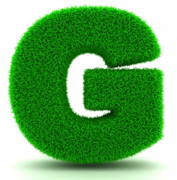 Letter G Size Icon image #21699