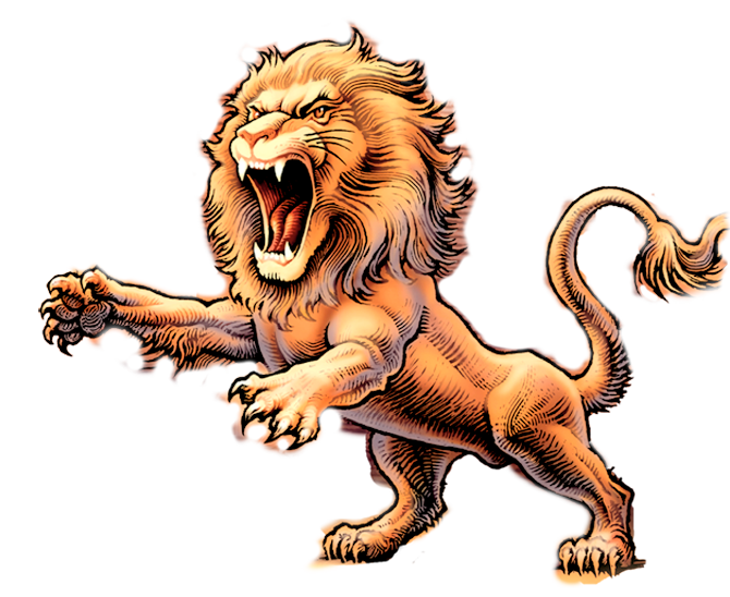 Lion Head Background Transparent