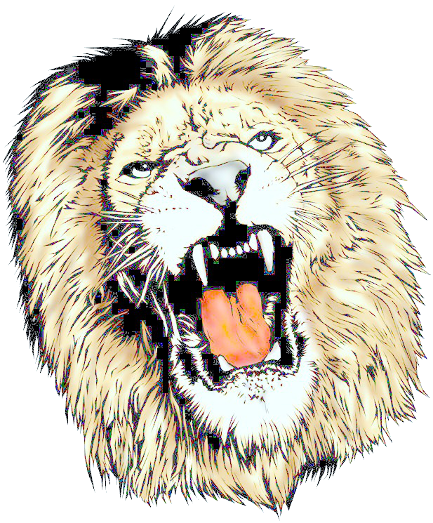 Png Clipart Lion Head Download