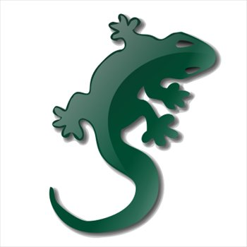 Icon Download Lizard image #33196