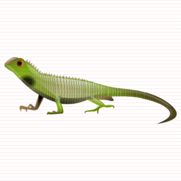 Lizard Size Icon image #33199