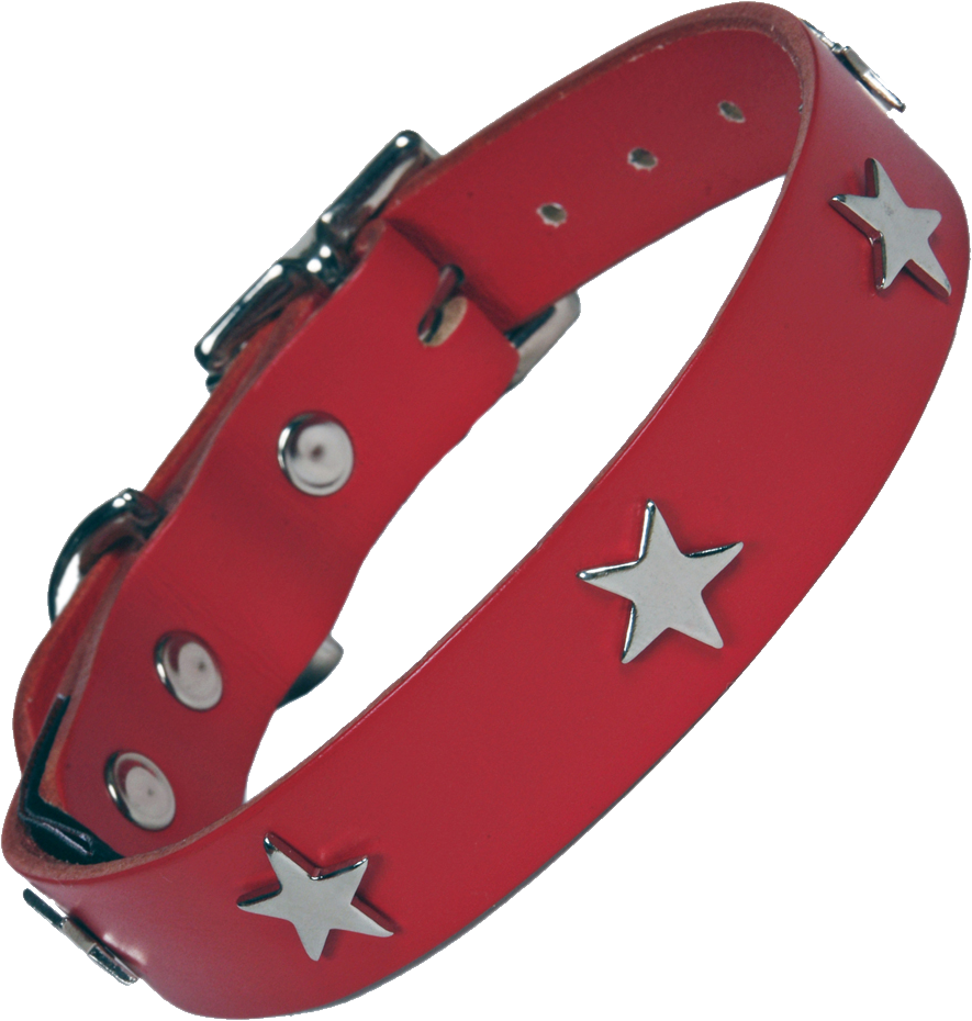 Metal star and a red dog collar Photos