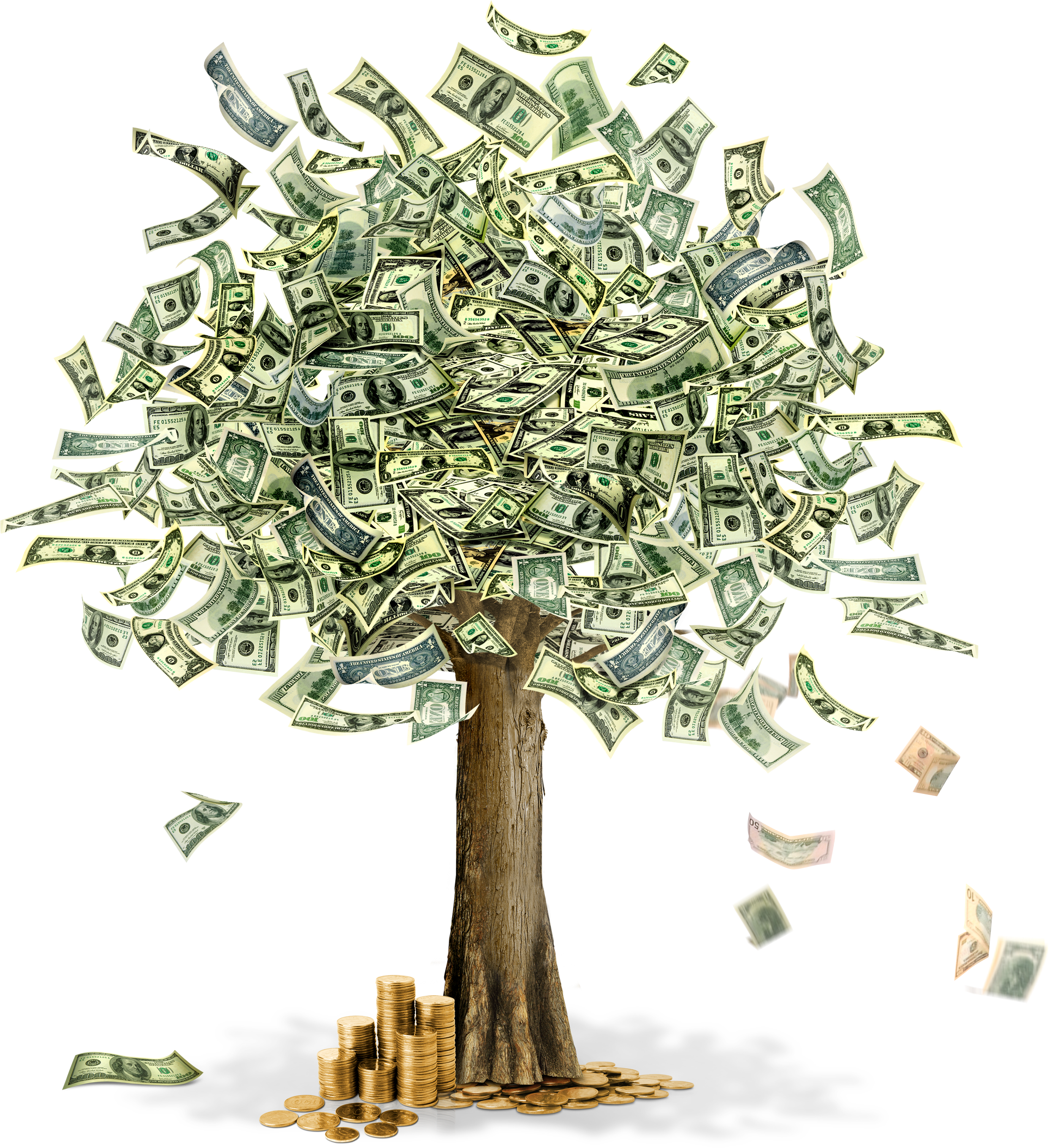 PNG Picture Money image #22631