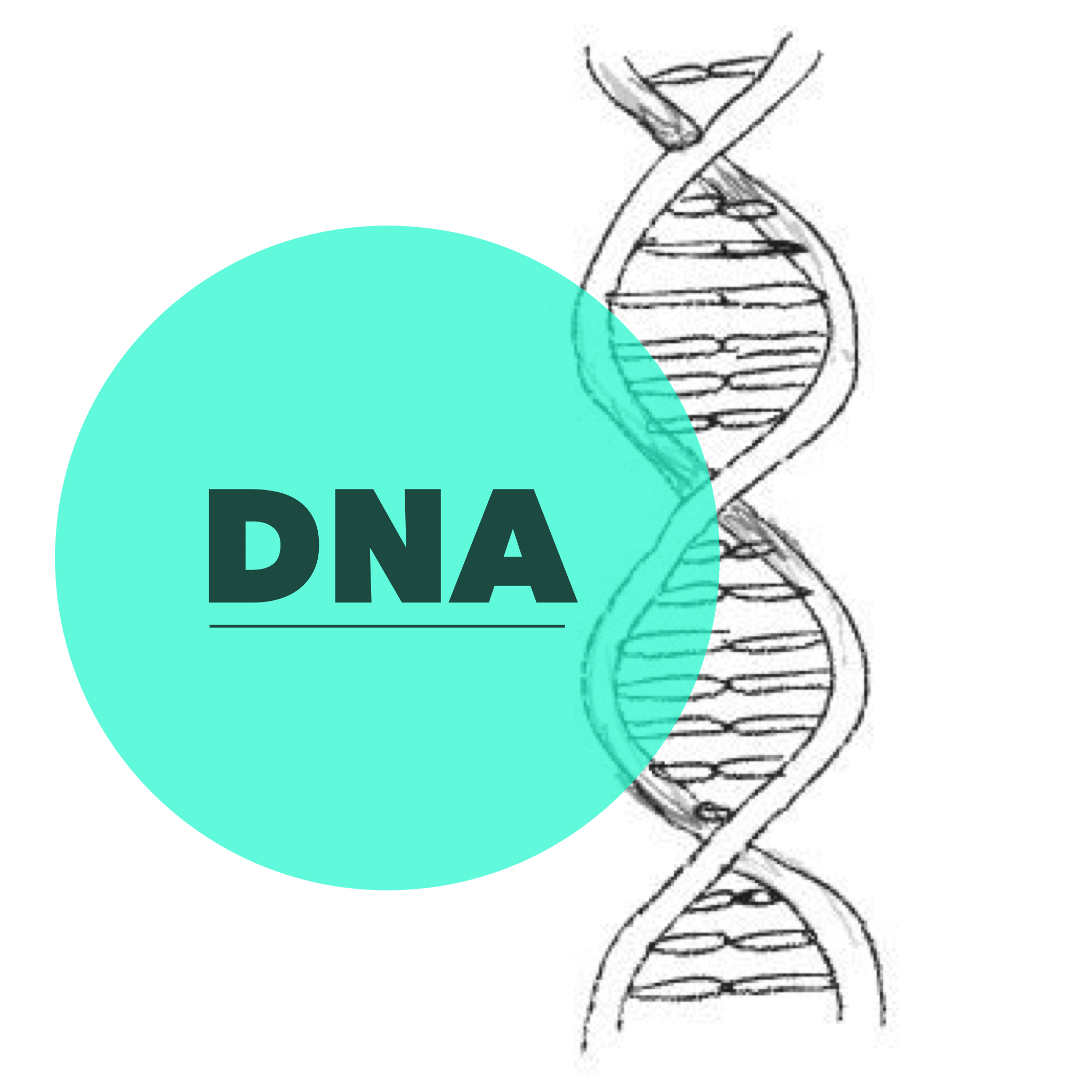 Nice Choice for Logo Dna Images