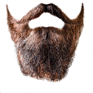 no background beard png