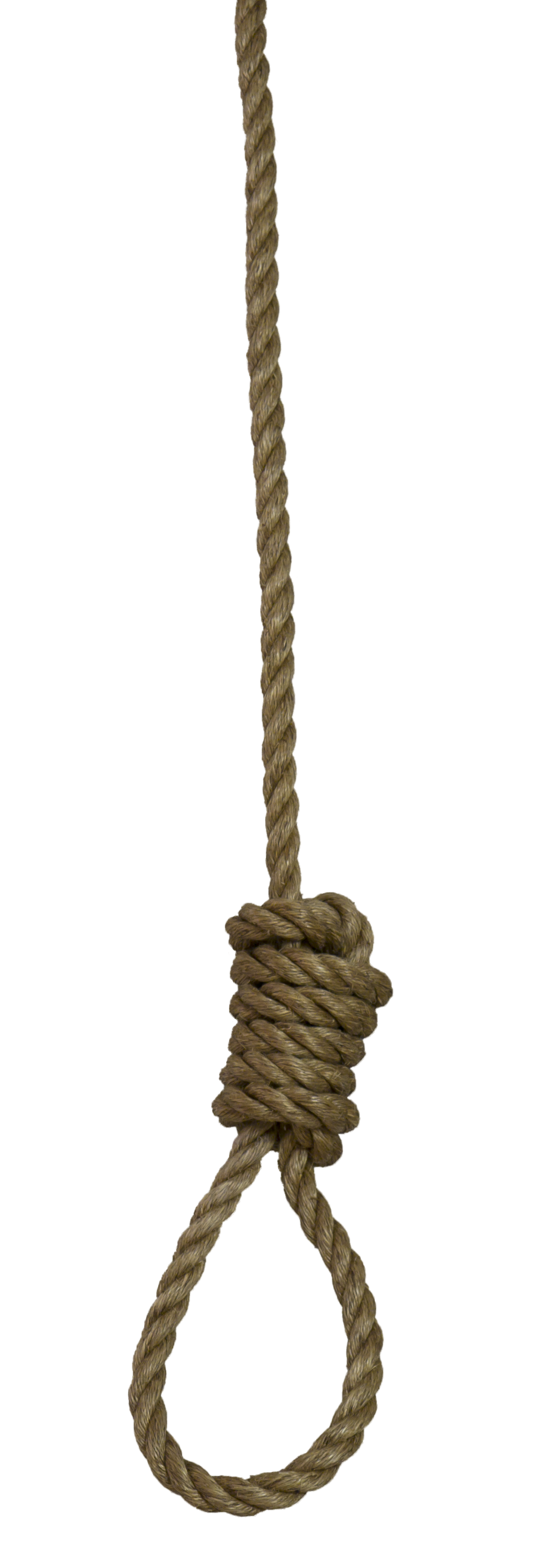 Vector Png Noose image #35243