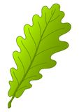 Png Icon Oak Tree image #16495