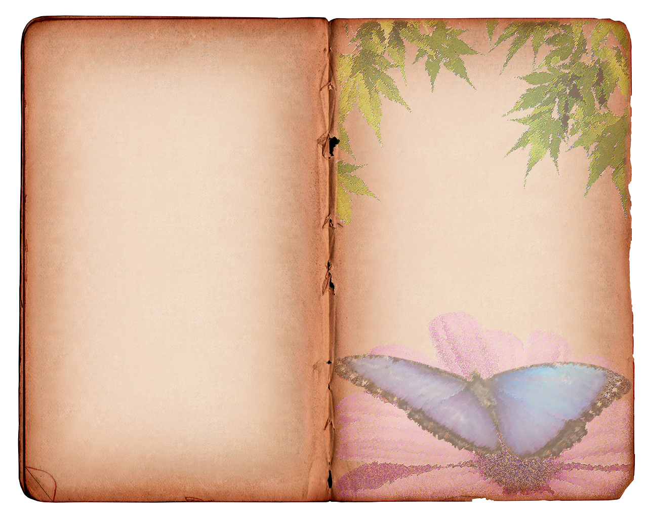 Old Book Photoshop Background Png image #24726