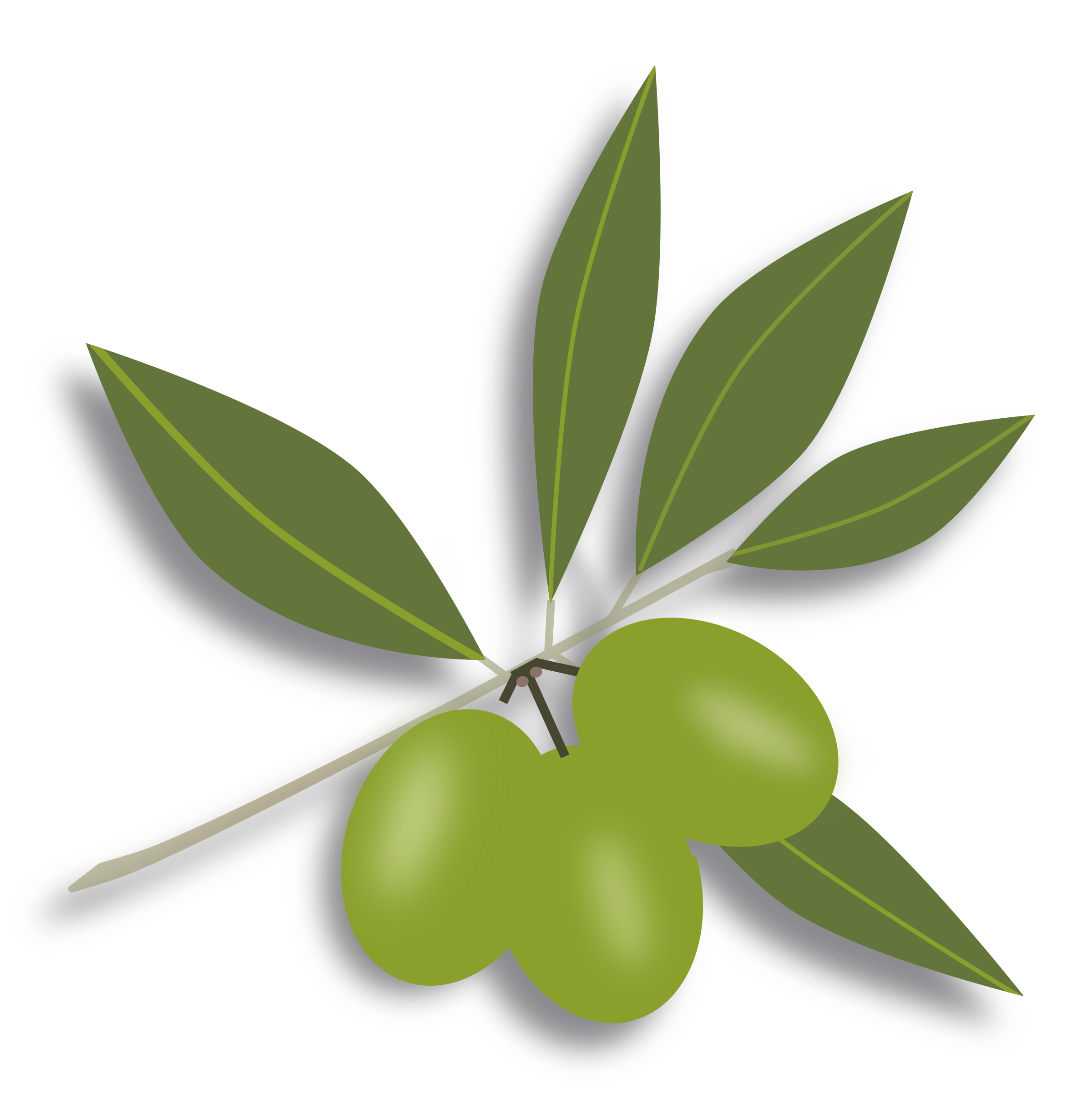 Olives Png Available In Different Size image #40579