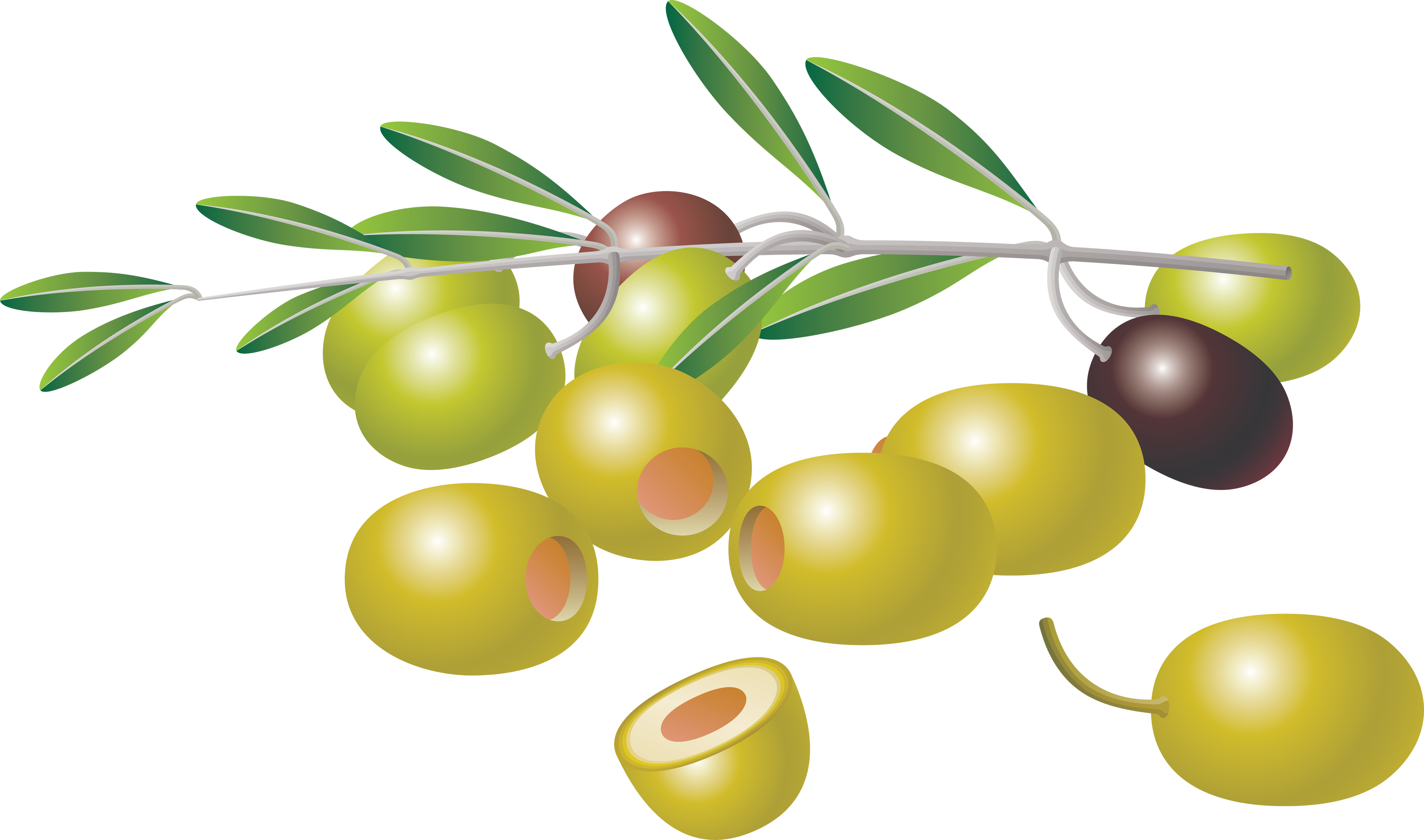 Icon Download Olives image #40581