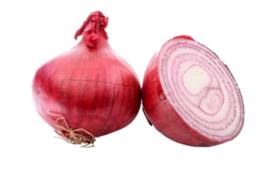 Best Free Onion Png Image image #38760