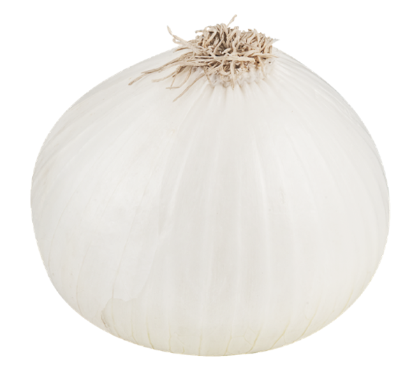 Browse And Download Onion Png Pictures image #38735