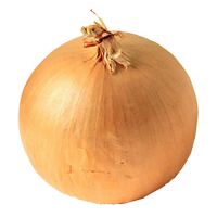Background Onion image #38764