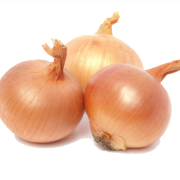 Onion Download Icon image #38741