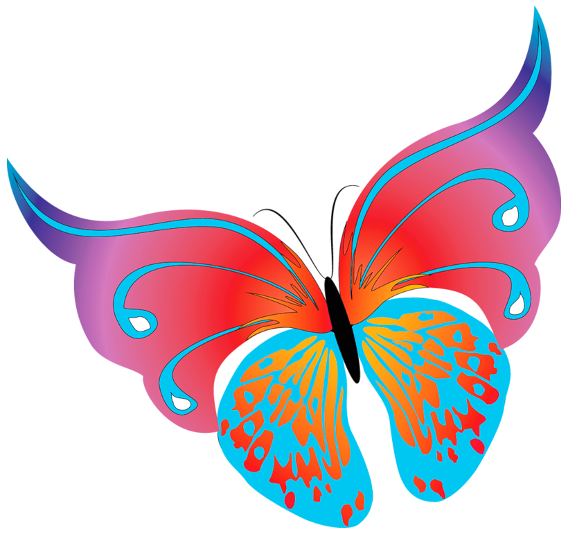 Painted Butterflies Png image #26568