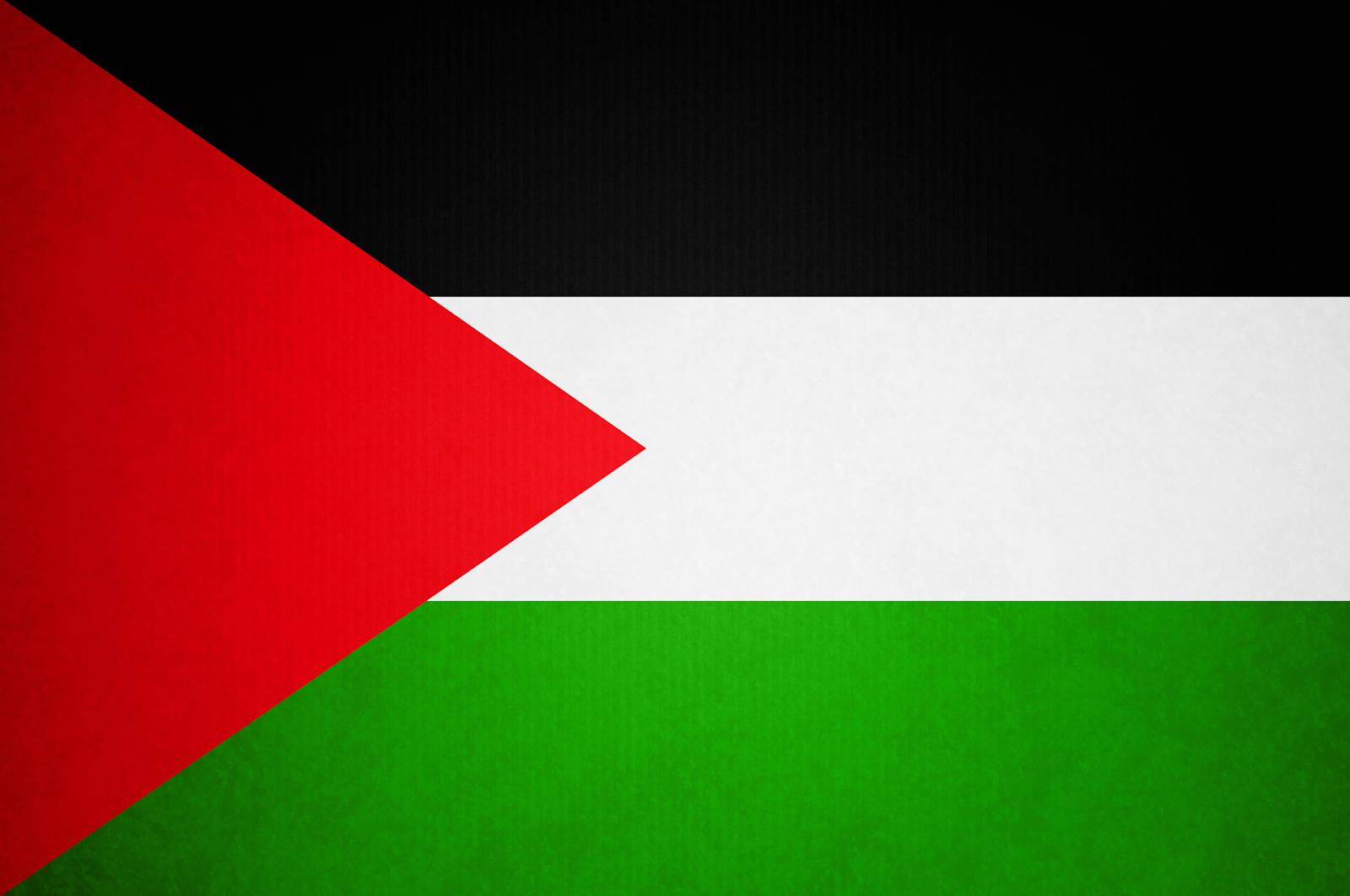 Palestine Flag Png image #38253