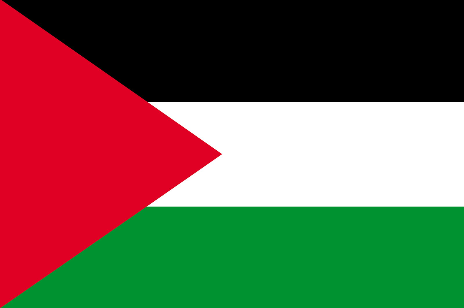 Palestine Flag Png image #38254