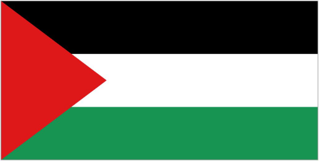 Palestine Flag Png image #38264