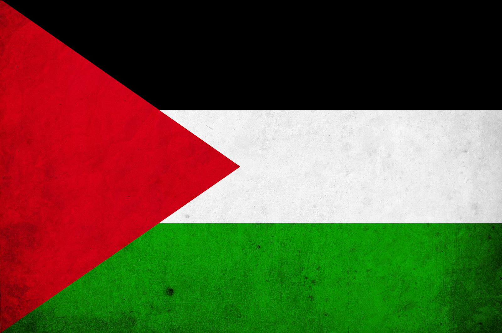 Palestine Flag Png image #38255