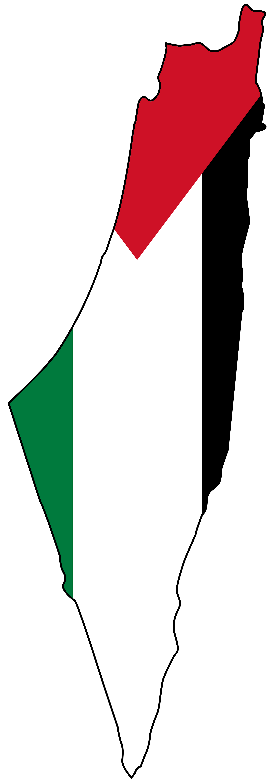 Palestine Flag Png image #38275