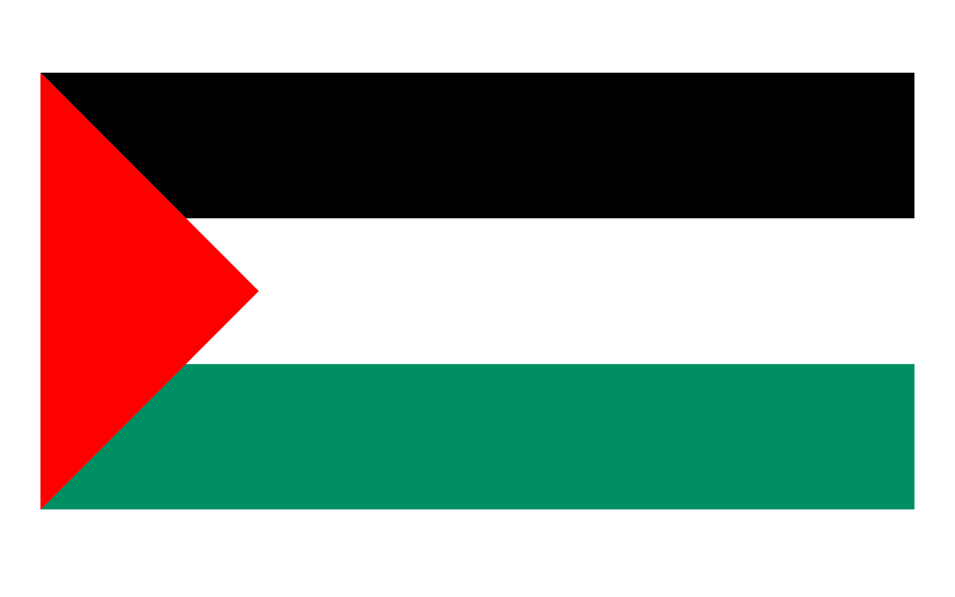 Palestine Flag Png image #38276
