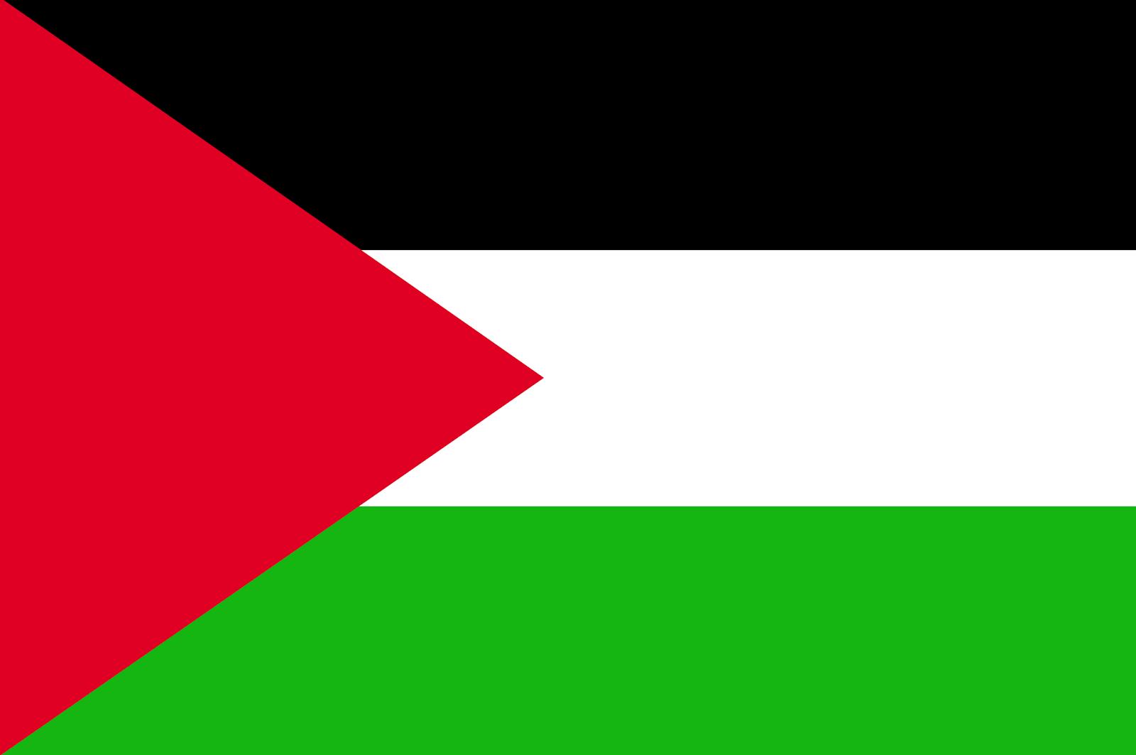Palestine Flag Png image #38256