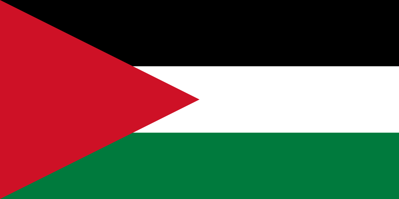 Palestine Flag Png image #38279