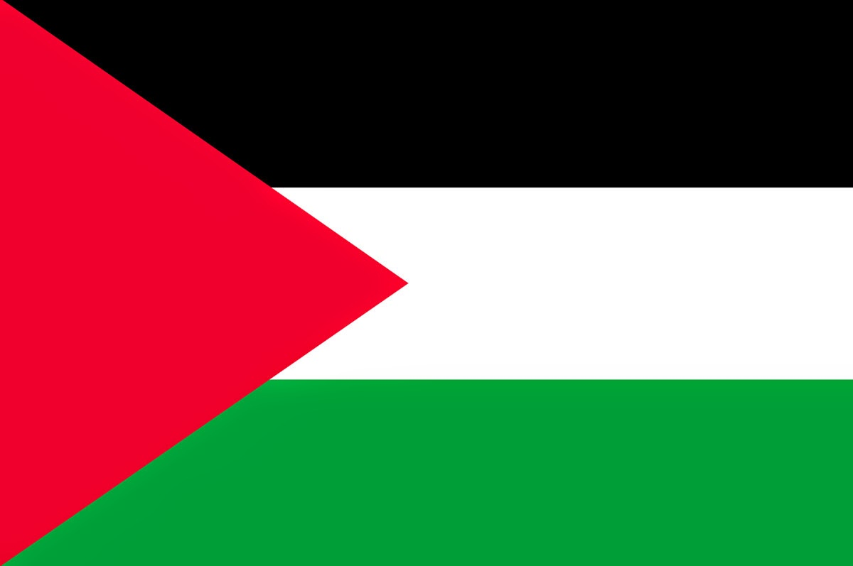 Photo PNG Palestine Flag image #38257