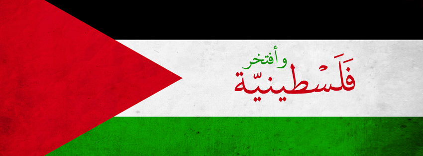 Free Download Palestine Flag Png Images image #38262