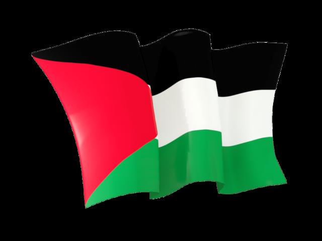 Palestinian, Palestine Flag Png image #38267
