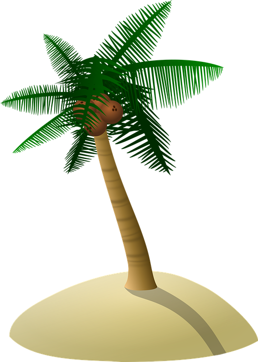 Palm Coconut Tree Icon Symbol image #46424