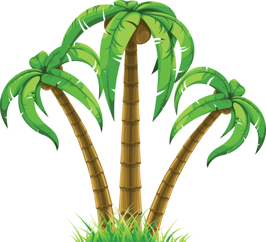 Image Coco S Poison Bow Png: Palm Tree Transparent PNG Pictures