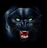 For Icons Windows Panther image #10631
