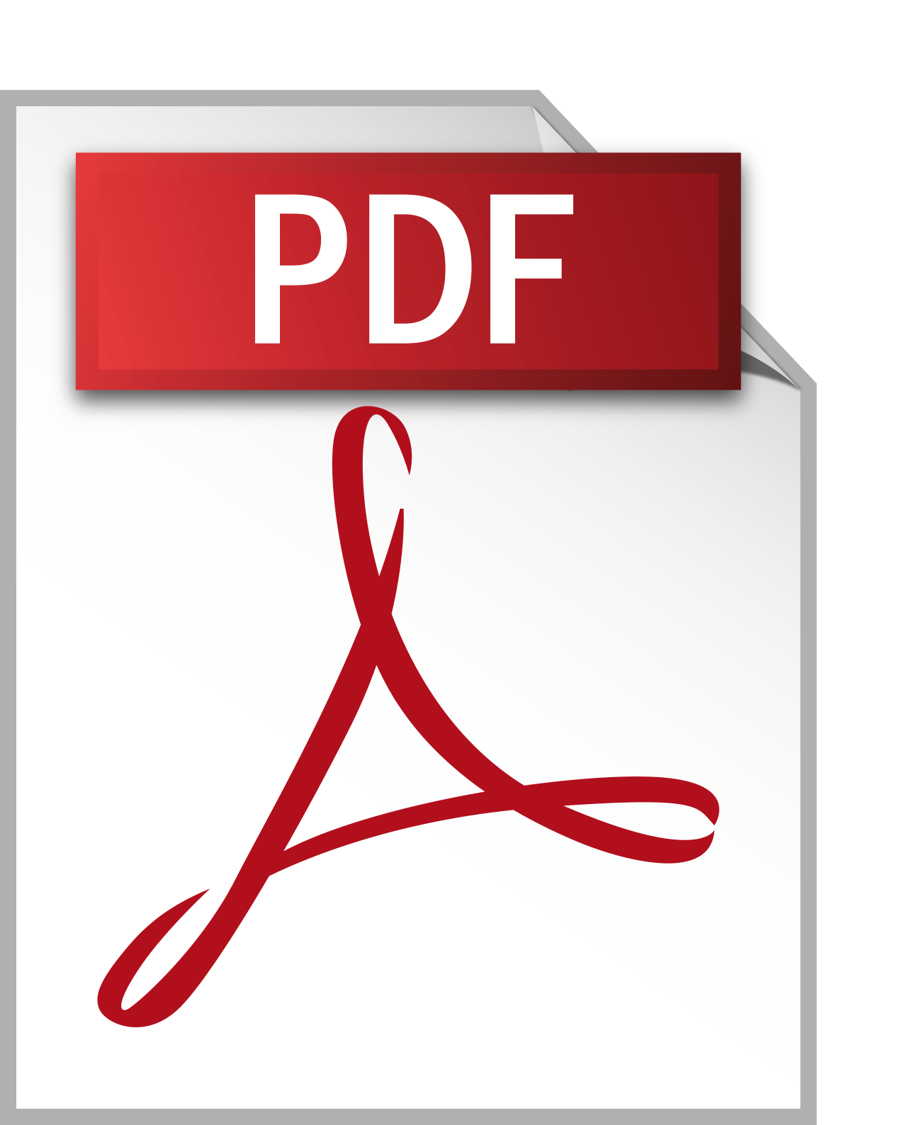 Image result for pdf symbol