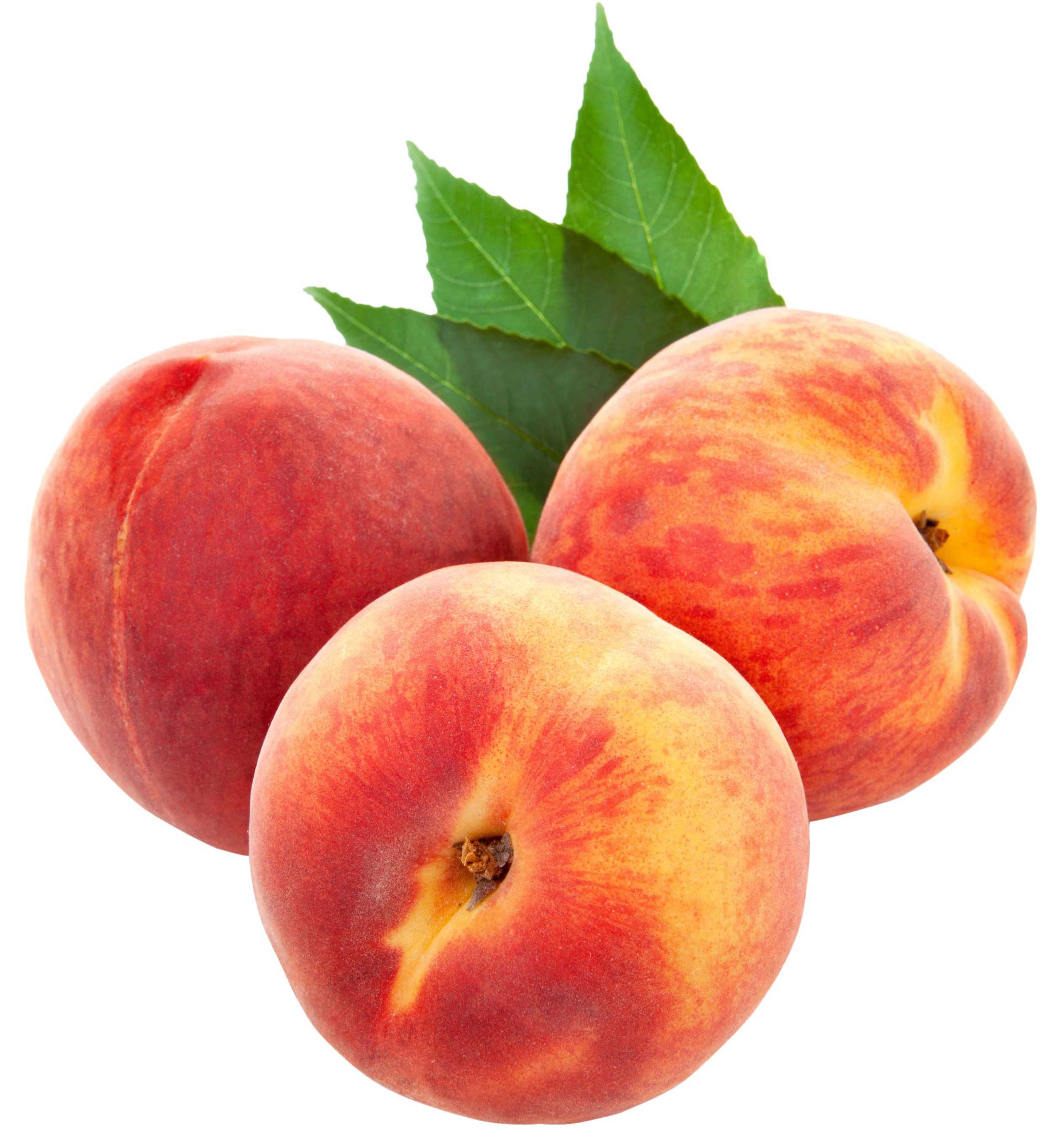 Peach Image Png image #41696