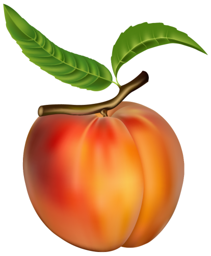 Peach PNG Clipart Image