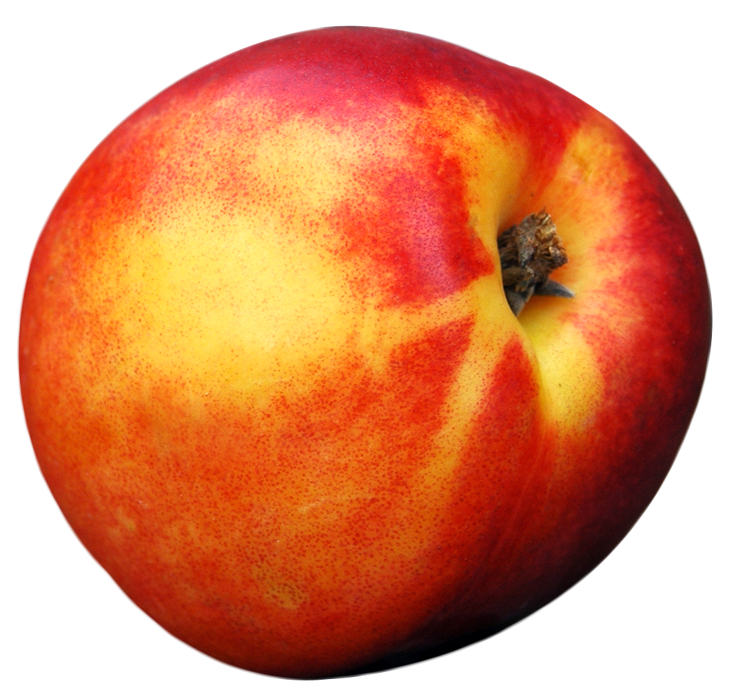 Peach PNG Image image #41694