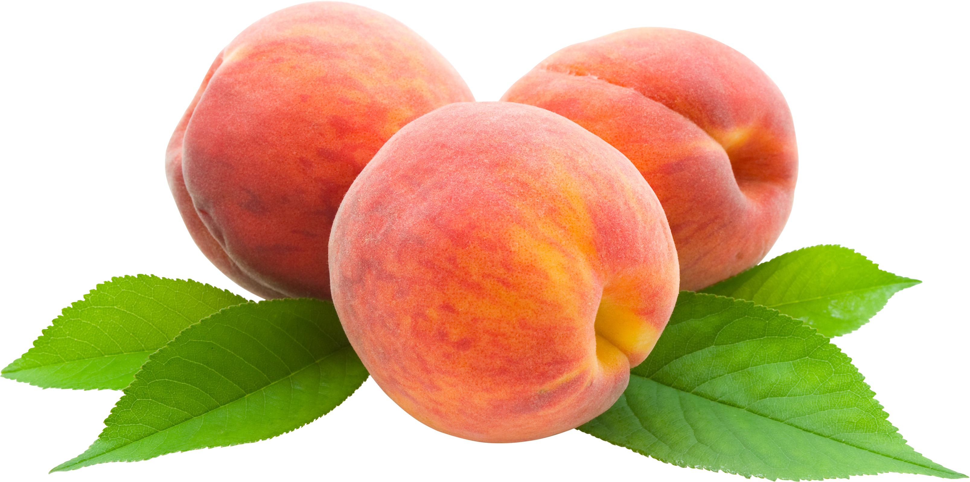 Peaches Free Tranparent Png image #41689