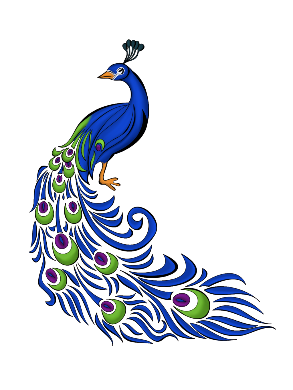 Image Collections Png Best Peacock