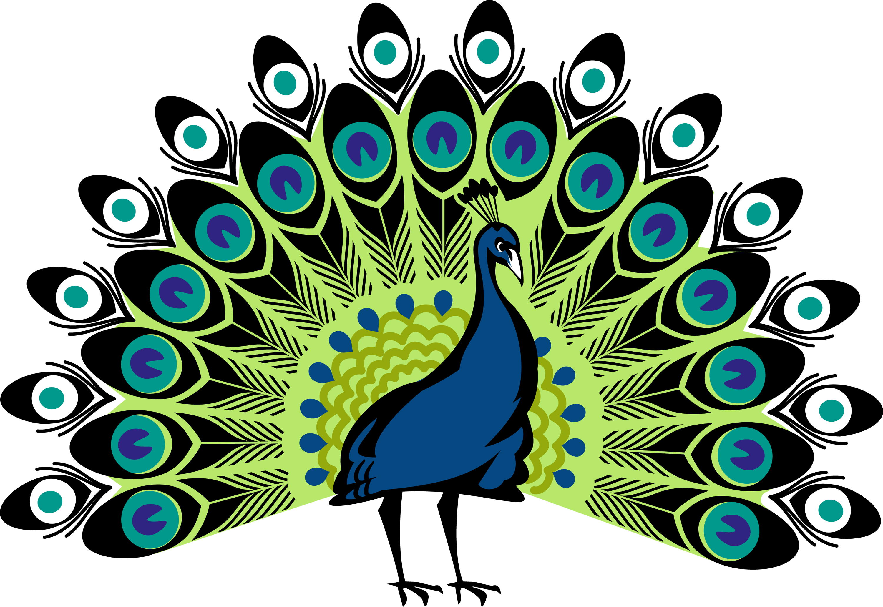 peacock png free icons and png backgrounds