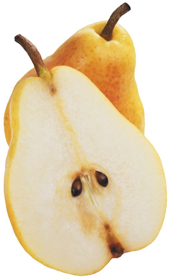 Download Free High-quality Pear Png Transparent Images image #38684