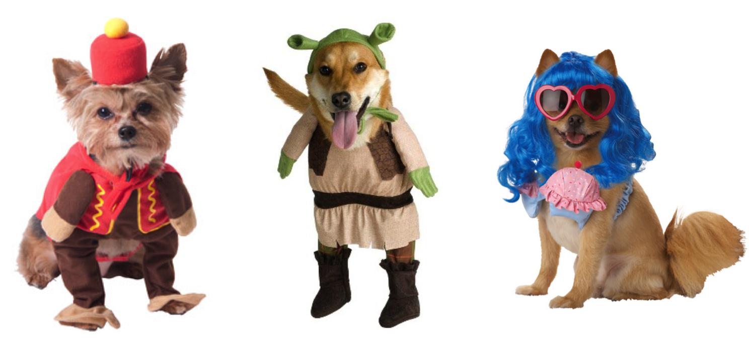 pet halloween costume png