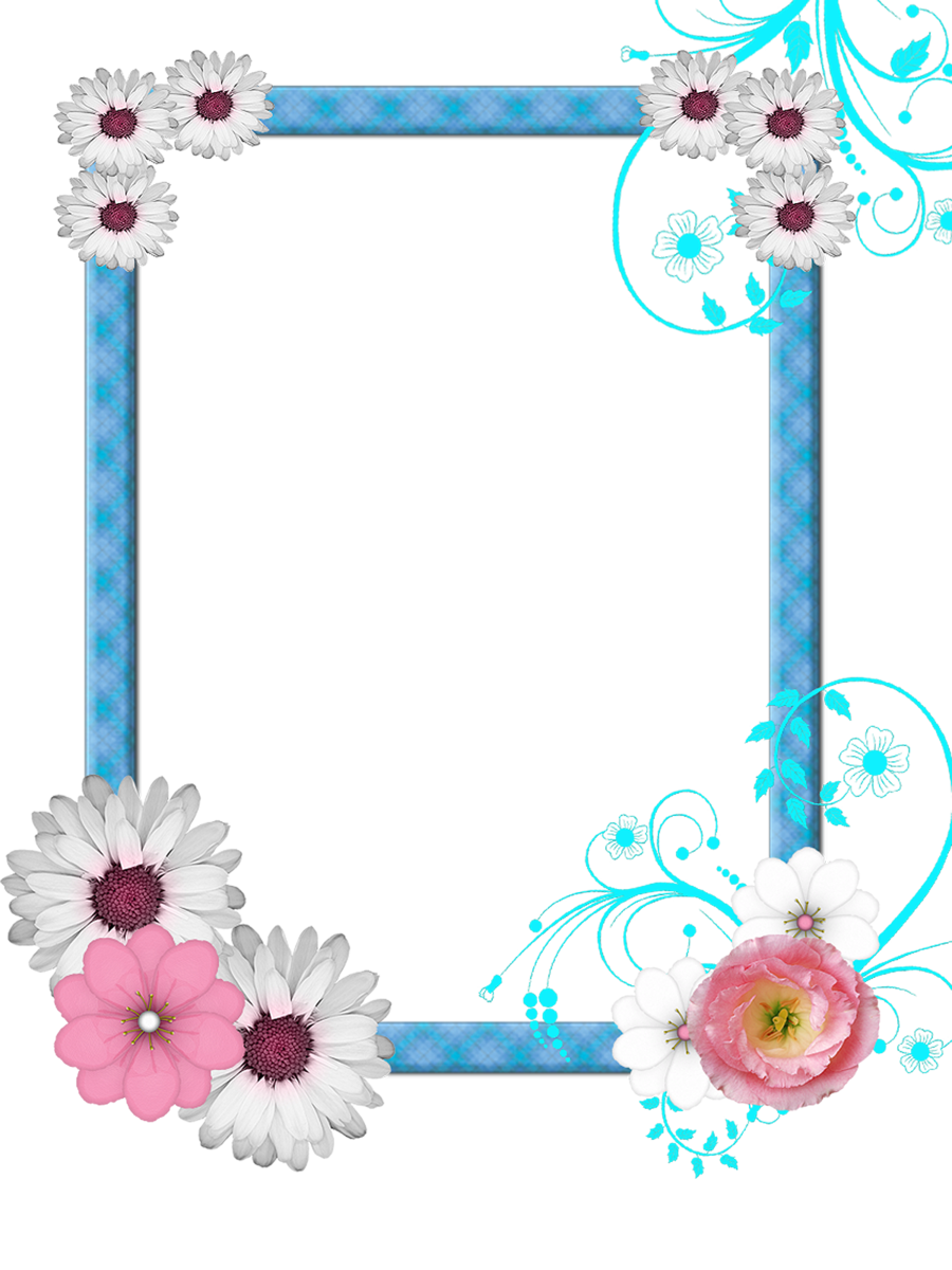 Free Pictures Clipart Photo Frame image #24572